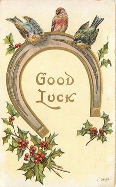 Good Luck Colorful Detailed Birds Perch on Gold Leaf Horseshoe Embossed 1908