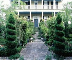 Spiral-pruned junipers create a grand front entry to this home. More front yard landscape secrets:http://www.bhg.com/gardening/landscaping-projects/landscape-basics/front-yard-landscape-secrets/?socsrc=bhgpin063013spiraljunipers=14