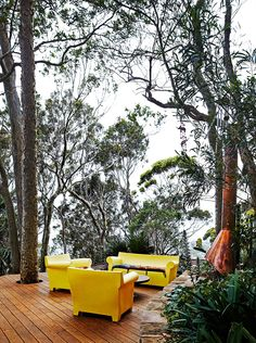 """The house embraces its natural bush environment. Kartell Philippe Starck """"Bubble Club"""" furniture, from [Space](http://www.spacefurniture.com.au/