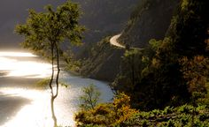 Known as the Seven Lakes Route, we will go along the section of National Route 234 that joins the districts of San Martín de los Andes and Villa La Angostura. Places To Travel, Travel Destinations, Places To Visit, South America Destinations, Central America, World, Pictures, Outdoor, Travelling