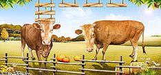 سياج مزرعة اليقطين الجبال المراعي البقر الزهور ملصق شعار Cow, Animals, Naturaleza, Animales, Animaux, Cattle, Animal, Animais