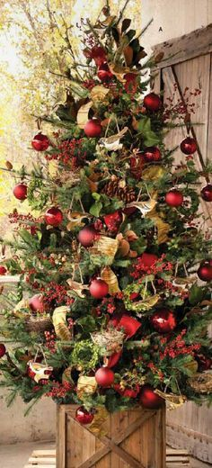 I love this beautiful Christmas tree with the ribbon of gold and the red ornaments.