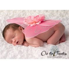 Newborn Tiny Fairy Wings for Infant Photo Props & Pictures