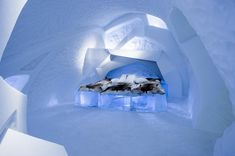 This year, 26 artists from 11 countries helped to build the ICEHOTEL exhibition in Sweden, which opened on December Each art suite is filled with incredible ice sculptures. The ice hotel is a unique destination that tourists flock to Sweden for.