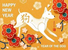 Happy Chinese New Years! Year of dog 🐶☺️