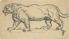 Jaguar / Paul Cezanne after Antoine-Louis Barye / graphite on wove paper / unknown date