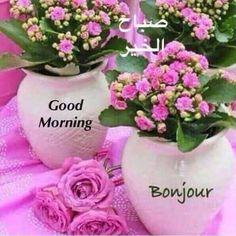 Tuesday Morning, Good Morning, Thursday, Glass Vase, Buen Dia, Bonjour, Bom Dia