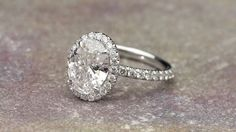 Oval Halo by David Klass Jewelry Halo Rings, David, Engagement Rings, Crystals, Diamond, Jewelry, Enagement Rings, Wedding Rings, Jewlery