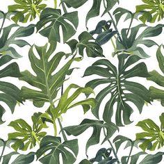 Monstera watercolour pattern - Louise Jones