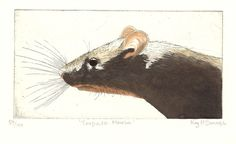"Kay McDonagh - ""Torpedo Mouse"". Original hand printed etching from my own press  Image size 525 x 275  Mounted in off white card 8 x 10"