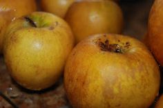 Fermented applesauce