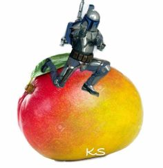 You've heard of Elf on a Shelf but have you heard of