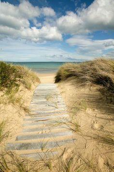 'Path to the Beach - Dolphin Sands, Australia&. - 'Path to the Beach - Dolphin Sands, Australia&. Playa Beach, Ocean Beach, Summer Beach, Summer Time, I Love The Beach, All Nature, Beach Scenes, Belle Photo, Beautiful Beaches