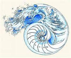 nautalis shell Tattoo Designs - Bing Images