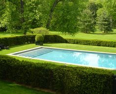 Pool surrounded by clipped hedges