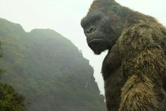 Warner Bros.SUNDAY, 12:40AM:There it's. There's that nice phrase of mouth working inKong: Cranium Island's favor.In late night time trade estimates, the Warner Bros./Legendary monster film is +18% from Friday's $20.2M for a Saturday of $23.9M placing the good ape's opening between $58.5M-$60.   #'American