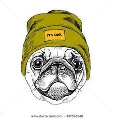 Портрет Мопс в битник шляпе. Векторная иллюстрация.