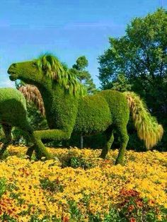 Horse topiary from Montreal Botanical Garden in Quebec, Canada, founded in 1931 Montreal Botanical Garden, Botanical Gardens, Botanical Art, Topiary Garden, Garden Plants, Formal Gardens, Outdoor Gardens, Amazing Gardens, Beautiful Gardens