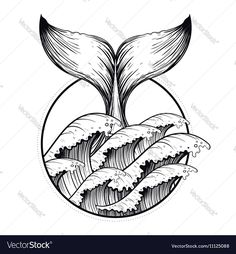 Whale tail in sea waves, boho blackwork tattoo. Ocean line a.- Whale tail in sea waves, boho blackwork tattoo. Ocean line art drawing. Vector i Whale tail in sea waves, boho blackwork tattoo. Ocean line art drawing. Vector i… – - Sea Drawing, Whale Drawing, Drawing Sketches, Whale Sketch, Drawing Art, Ocean Wave Drawing, Tattoo Design Drawings, Tribal Tattoo Designs, Art Drawings