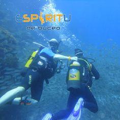 #EspiritudeBuceo #PadiDiveCentre #AqualugPartneCentre #DivingSpirit #Padi #S24642 #Aqualung #Apeks #Suunto #DanEurope #Diveassure #Buceo #Scuba #Dive #Diving #SnorkelTrips #DivingCentre  #DiveLife #Holidays #PuertodeSantiago #LosGigantes #PlayadeLaArena #Tenerife #Canaries #CanaryIslands #Canarias #IslasCanarias #Spain #España