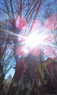 Buenos Aires #winter #lensflare