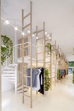 the design creates an atmosphere where products and architecture come together in a harmonious nature filled with plants and natural light.