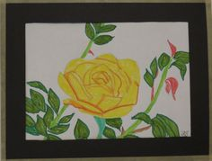 Yellow Rose - marker pens.