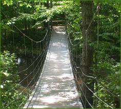 Bella Vista, Arkansas ~ Tanyard Creek Nature Trail. This well maintained and beautiful trail is fun to hike or mountain bike and it has this awesome swinging bridge and a pretty waterfall, too. It winds through lush woods and has some ancient and gorgeous large rock formations.