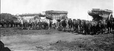 Wheat wagons drawn by several horses | por The Field Museum Library