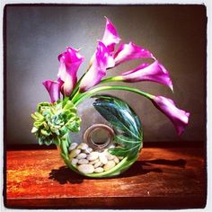 A modern floral composition of calla lillies, echeveria, aralia foliage and polished river rocks!!