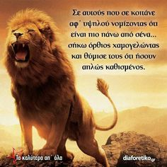 Hear me roar! Bible Verses About Strength, Bible Verses Quotes, Bible Scriptures, Lion Bible Verse, Wisdom Quotes, Qoutes, Lion Of Judah Jesus, Romans 8 31, Lion And Lamb
