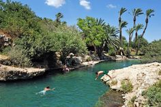 This national park in Israel is a year-round destination for water lovers. Israel Travel, Group Travel, Hot Springs, Diving, Garden Design, National Parks, Places To Visit, River, Nature