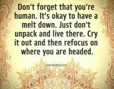 Meltdowns are an okay, temporary destination...