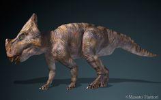 Montanoceratops20110828_1.jpg