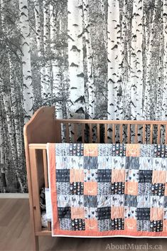 See Brittany's Birch Trees Nursery & Other Rooms using this Removable Wallpaper – Poster Tree Wallpaper Room, Birch Tree Wallpaper, Forest Wallpaper, I Wallpaper, Nursery Wallpaper, Birch Tree Mural, Birch Trees, Nursery Neutral, Other Rooms