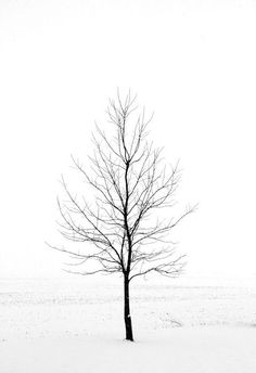Minimalist Art Winter Landscape Photography by hockmanphotography