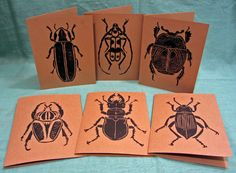 awesome, anatomically correct beetle print cards!