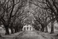 Abandoned Mansions In The South | Abandoned Mansion in the Deep South | Flickr - Photo Sharing!