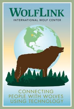 Take your students on a trip to the International Wolf Center in Ely, Minnesota without setting foot outside your own classroom! Using the latest technology, we offer engaging WolfLink programs for a variety of audiences via two-way videoconferencing.