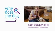 A new site for on-the-go dog lovers everywhere launches! @WhyDoesMyDog is designed to give only the advice that can help you and your dog have a rich and more rewarding relationship! #dogtraining #whydoesmydog Why Does My Dog? #sponsored