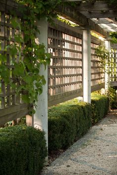 """On the side of a wood pergola, landscape architect Janice Parker installed a lattice trellis to help vines and climbers grow. """"The combination [of pergola and trellis] provides the ideal support structure for growing perennials for additional privacy and Garden Privacy Screen, Diy Privacy Fence, Privacy Fence Designs, Privacy Landscaping, Garden Fencing, Trellis Fence, Landscaping Ideas, Diy Fence, Privacy Trellis"""