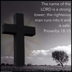 The name of the LORD is a strong tower; and the righteous man runs into it and is safe. Proverbs 18:10 #holycam