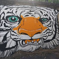 Kitty cat street art in Chiang Mai