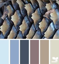 { autumn tones } image via: @designseeds