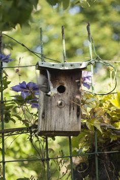 Vogelhäuschen mit Meise