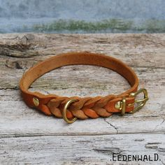 * * Fat leather collar with small braid * * _ Dog Belt, Small Braids, Medium Sized Dogs, Leather Dog Collars, Collar And Leash, Rind, Leather Necklace, Chokers, Germany