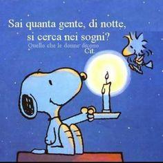 Snoopy ha sempre ragione!