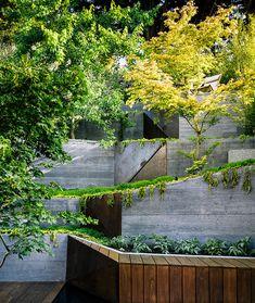 Сад в пригороде Сан-Франциско