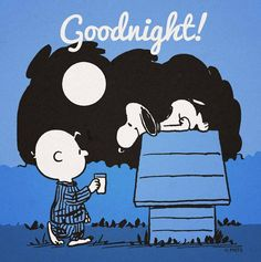 Click on pictures for the largest view.      Goodnight! Charlie Brown with Snoopy on his dog house ~ Z Woodstock sleeping in his nest      G...