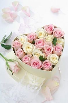 heart box of roses https://www.pinterest.com/pin/197454764887857280/